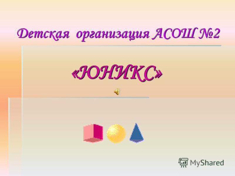 «ЮНИКС» Детская организация АСОШ 2