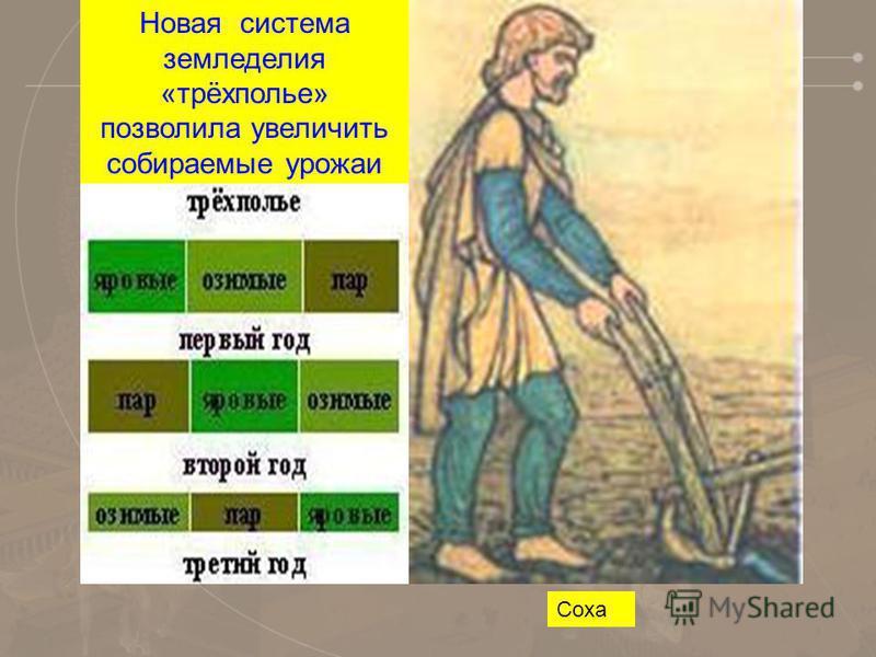 Новая система земледелия «трёхполье» позволила увеличить собираемые урожаи Соха