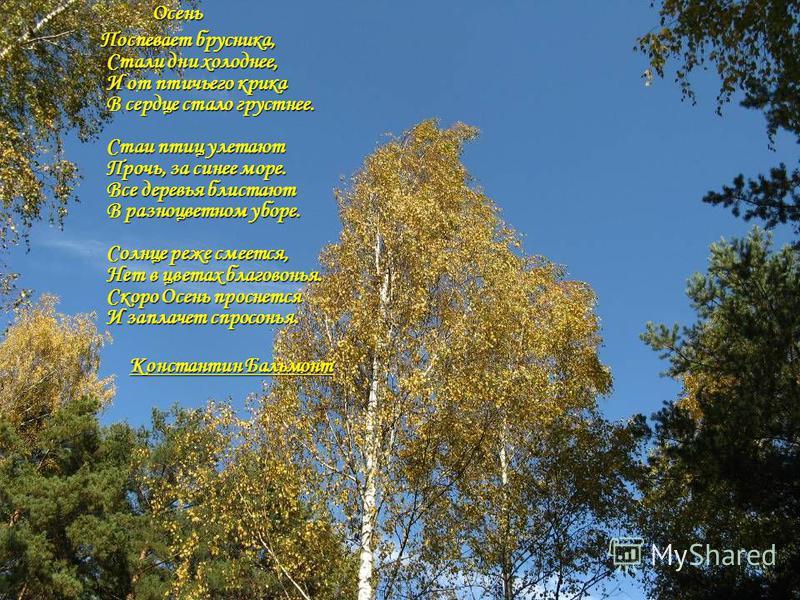 Осень Осень Поспевает брусника, Стали дни холоднее, И от птичьего крика В сердце стало грустнее. Стаи птиц улетают Прочь, за синее море. Все деревья блистают В разноцветном уборе. Солнце реже смеется, Нет в цветах благовонья. Скоро Осень проснется И