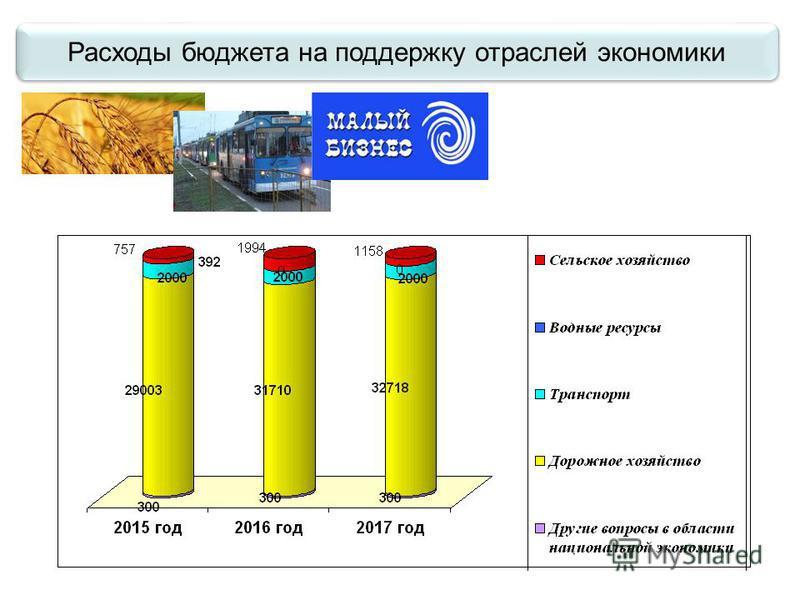 Расходы бюджета на поддержку отраслей экономики