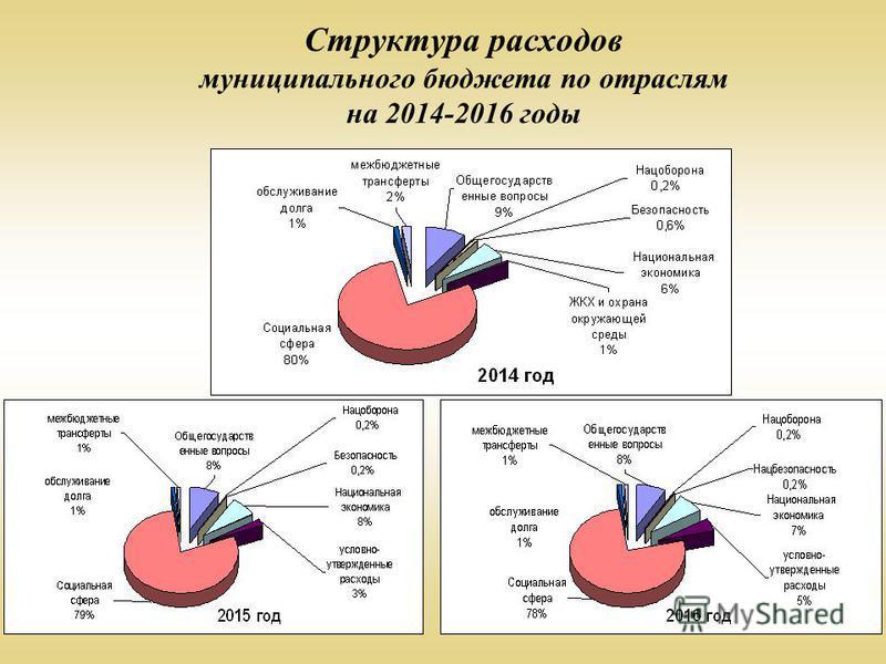 Структура расходов муниципального бюджета по отраслям на 2014-2016 годы