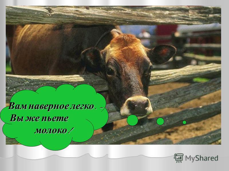 Вам наверное легко. – Вы же пьете Вы же пьете молоко ! молоко !