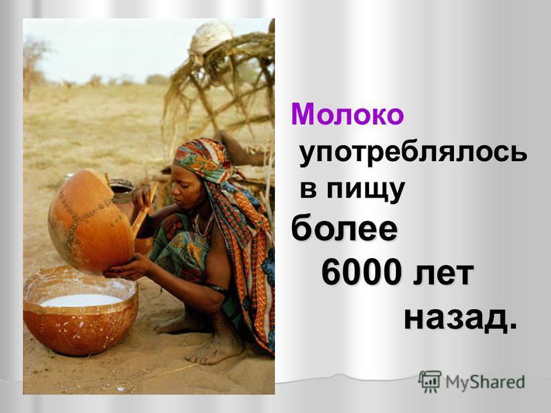 Молоко употреблялось в пищу более 6000 лет 6000 лет назад. назад.