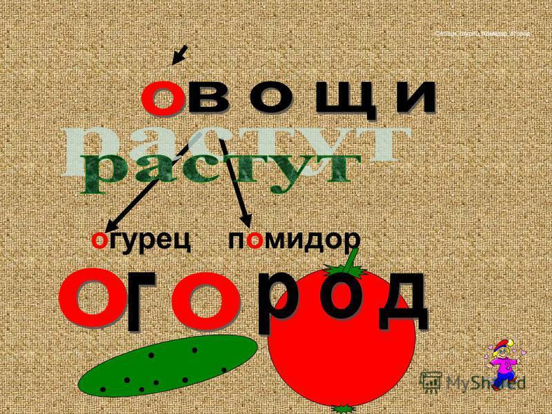 огурец помидор Овощи, огурец, помидор, огород