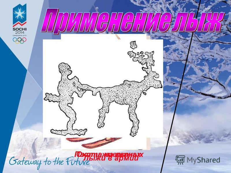 Охота на лыжах Пасти животных Лыжи в армии