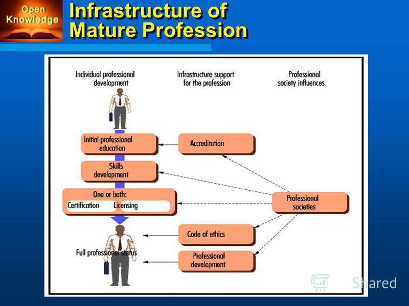 Infrastructure of Mature Profession