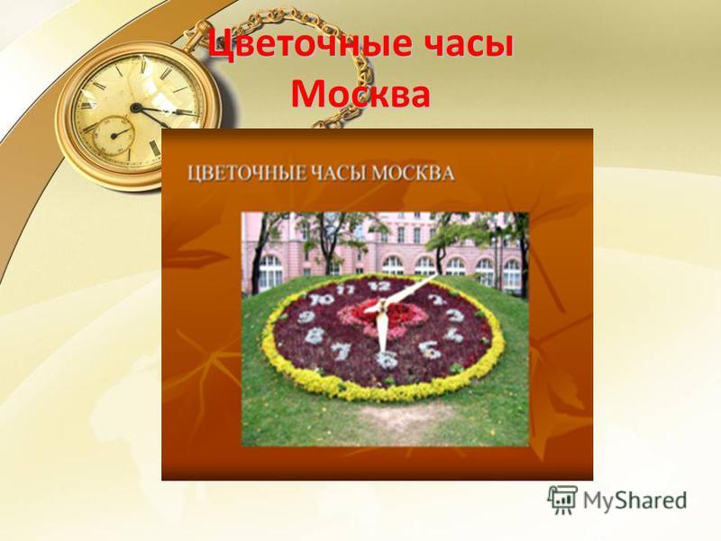 Цветочные часы Москва