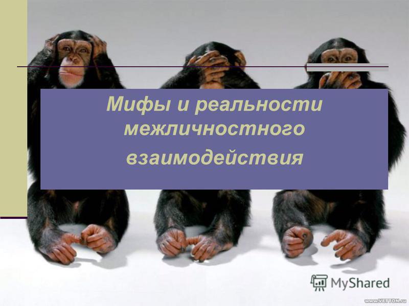 Мифы и реальности межличностного взаимодействия