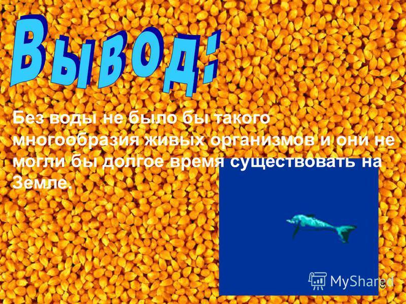 Без воды не было бы такого многообразия живых организмов и они не могли бы долгое время существовать на Земле. 8