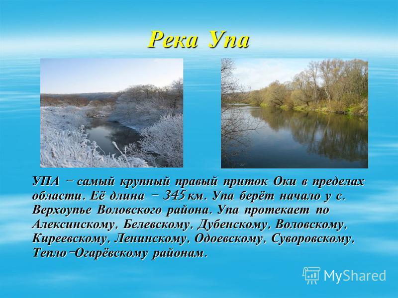 Река Упа УПА – самый крупный правый приток Оки в пределах области. Её длина – 345 км. Упа берёт начало у с. Верхоупье Воловского района. Упа протекает по Алексинскому, Белевскому, Дубенскому, Воловскому, Киреевскому, Ленинскому, Одоевскому, Суворовск