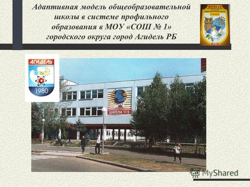 Адаптивная модель общеобразовательной школы в системе профильного образования в МОУ «СОШ 1» городского округа город Агидель РБ