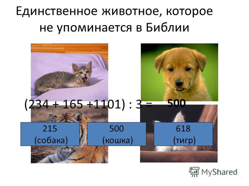 Единственное животное, которое не упоминается в Библии (234 + 165 +1101) : 3 = 500 215 (собака) 500 (кошка) 618 (тигр)