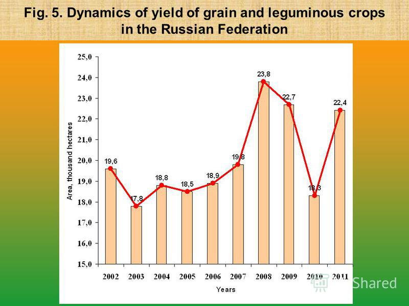 Fig. 5. Dynamics of yield of grain and leguminous crops in the Russian Federation