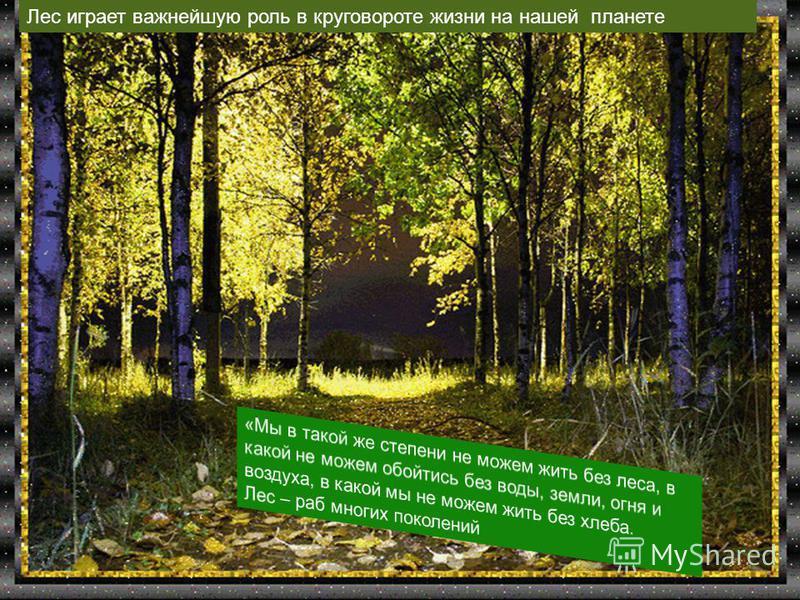 Free Powerpoint Templates Page 2 Лес играет важнейшую роль в круговороте жизни на нашей планете