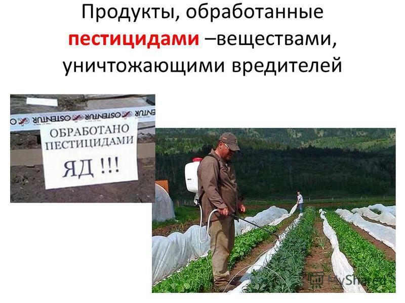 Продукты, обработанные пестицидами –веществами, уничтожающими вредителей