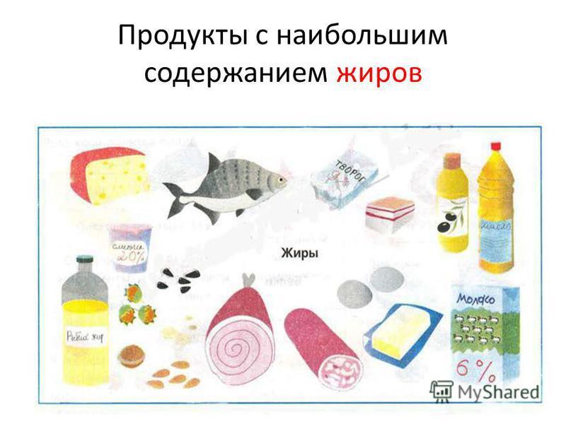 Продукты с наибольшим содержанием жиров