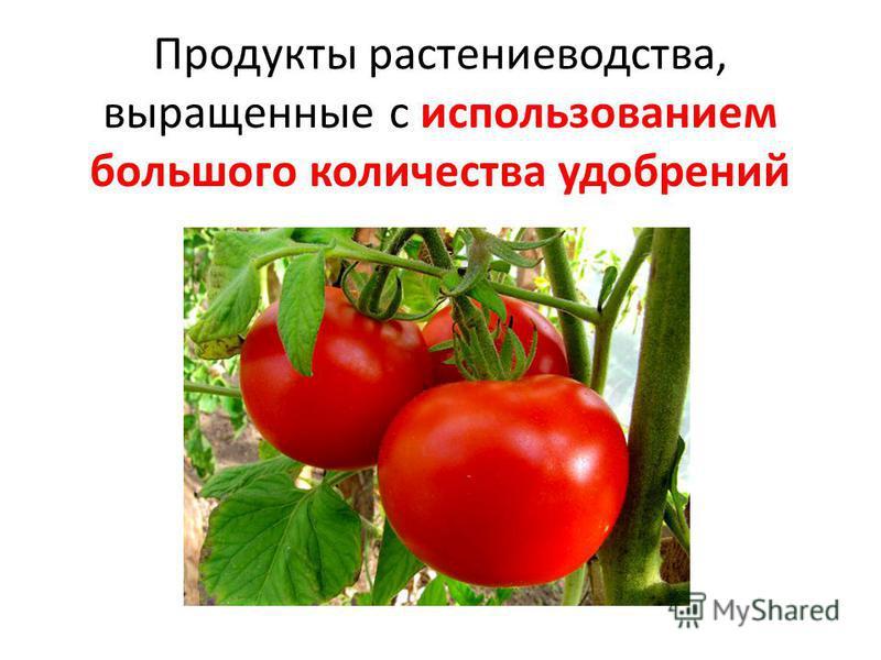 Продукты растениеводства, выращенные с использованием большого количества удобрений