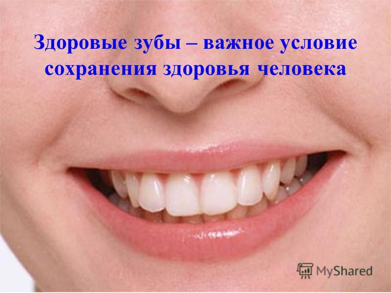 Здоровые зубы – важное условие сохранения здоровья человека