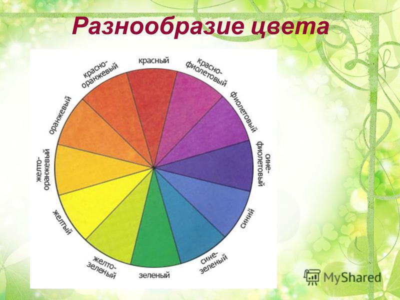 Разнообразие цвета