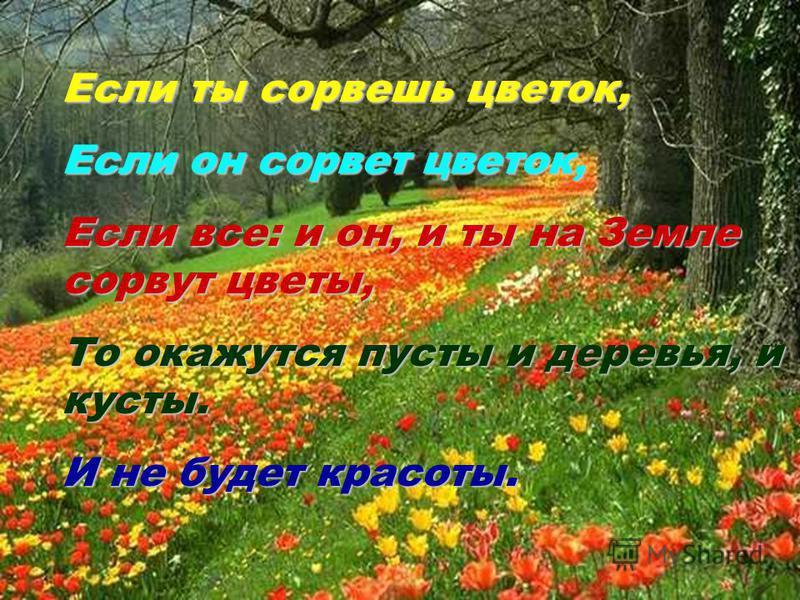 Если ты сорвешь цветок, Если он сорвет цветок, Если все: и он, и ты на Земле сорвут цветы, То окажутся пусты и деревья, и кусты. И не будет красоты.