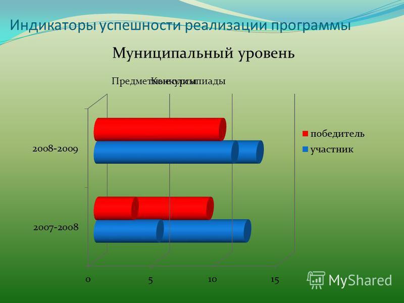 Индикаторы успешности реализации программы Муниципальный уровень