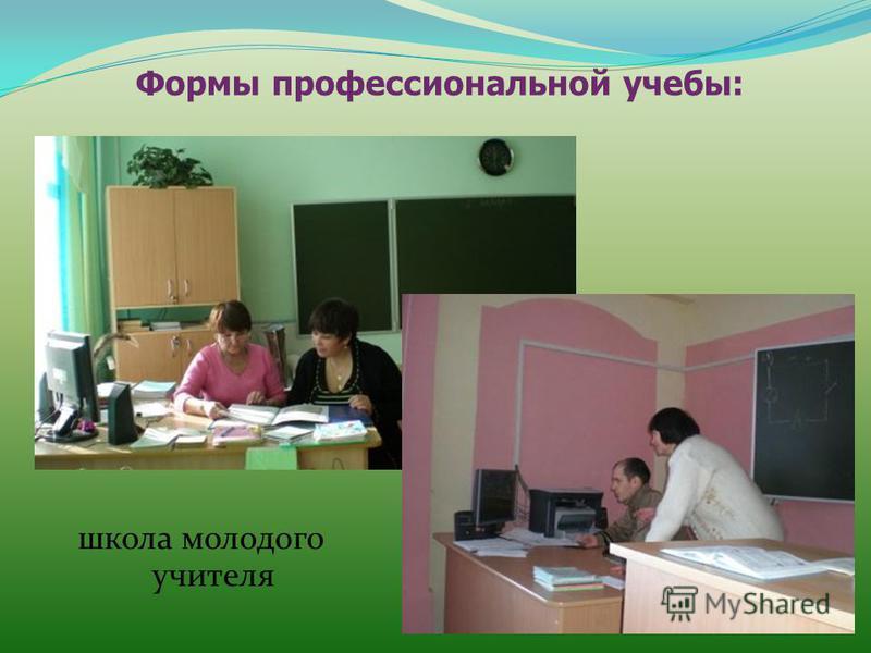 Формы профессиональной учебы: школа молодого учителя