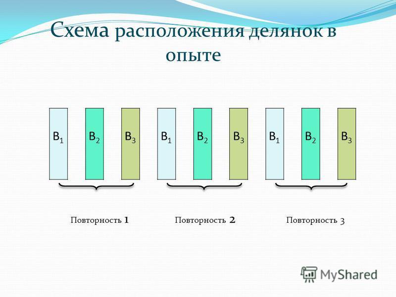 Схема расположения делянок в опыте Повторность 1 Повторность 2 Повторность 3 В1В1 В2В2 В3В3 В1В1 В2В2 В3В3 В1В1 В2В2 В3В3