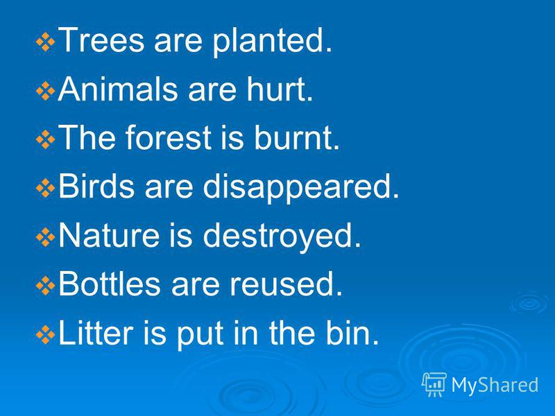 Trees are planted. Animals are hurt. The forest is burnt. Birds are disappeared. Nature is destroyed. Bottles are reused. Litter is put in the bin.