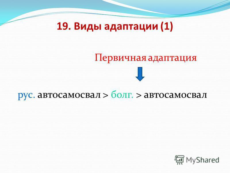 19. Виды адаптации (1) Первичная адаптация рус. автосамосвал > болг. > автосамосвал