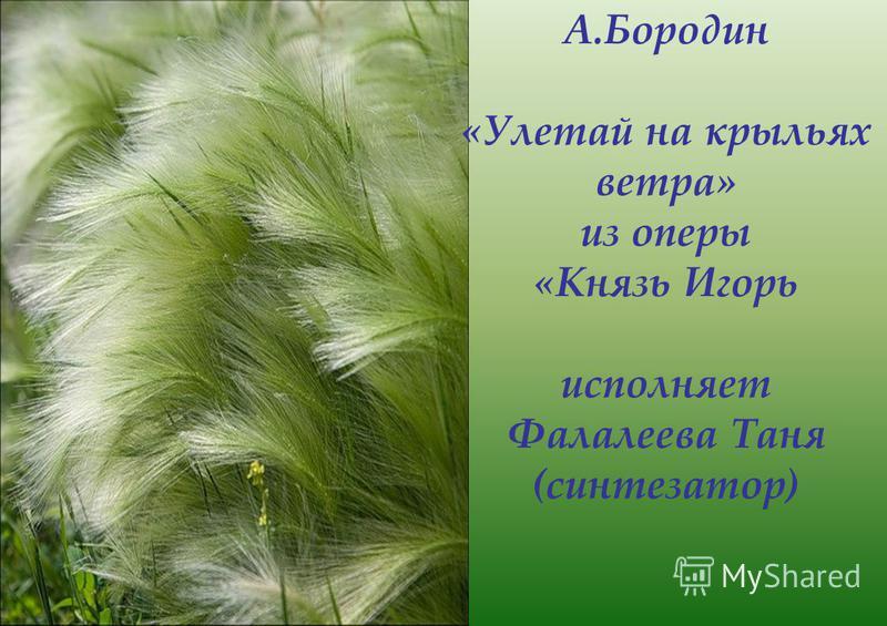 В. Моцарт Andante Исполняют Юлдашбаева Ирина (фортепиано) Борзых Настя (синтезатор)
