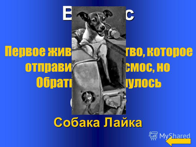 Вопрос Ответ Алексей Леонов Первый космонавт, совершивший выход в открытый космос