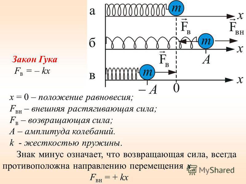 x = 0 – положение равновесия; F вн – внешняя растягивающая сила; F в – возвращающая сила; A – амплитуда колебаний. k - жесткостью пружины. Знак минус означает, что возвращающая сила, всегда противоположна направлению перемещения x F вн = + kx Закон Г