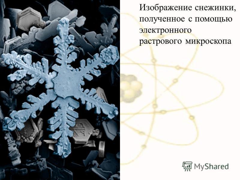 Изображение снежинки, полученное с помощью электронного растрового микроскопа