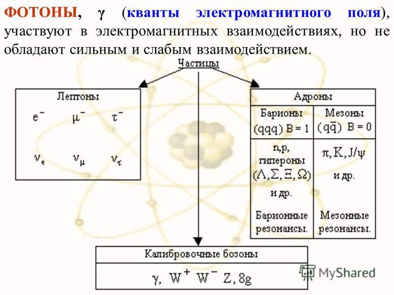 ФОТОНЫ, γ (кванты электромагнитного поля), участвуют в электромагнитных взаимодействиях, но не обладают сильным и слабым взаимодействием.