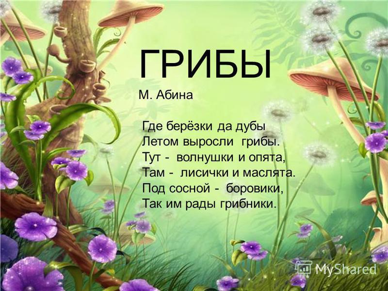 Грибы ГРИБЫ М. Абина Где берёзки да дубы Летом выросли грибы. Тут - волнушки и опята, Там - лисички и маслята. Под сосной - боровики, Так им рады грибники.