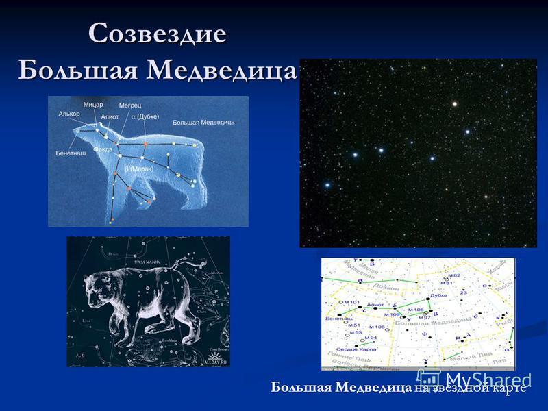 Созвездие Большая Медведица Большая Медведица на звёздной карте