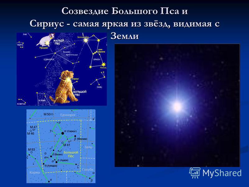 Созвездие Большого Пса и Сириус - самая яркая из звёзд, видимая с Земли