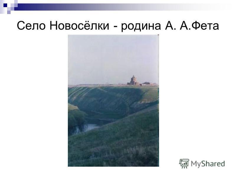 Село Новосёлки - родина А. А.Фета