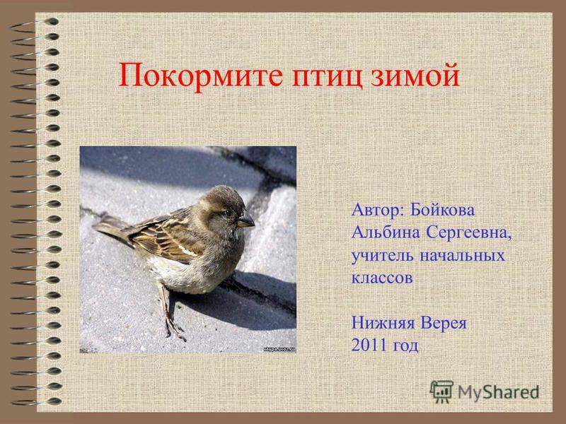 Покормите птиц зимой Автор: Бойкова Альбина Сергеевна, учитель начальных классов Нижняя Верея 2011 год