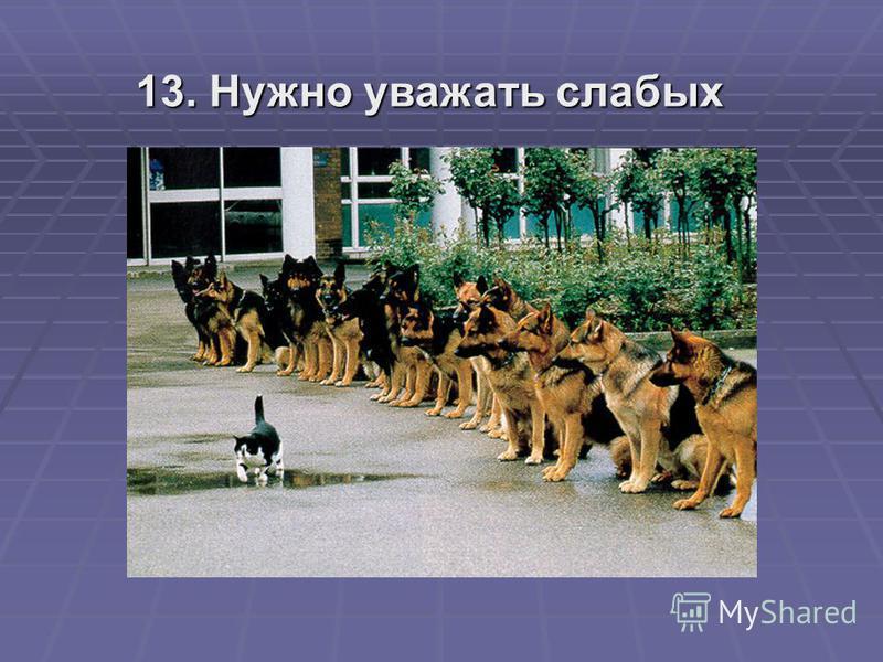 13. Нужно уважать слабых