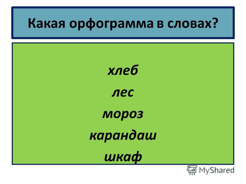 Какая орфограмма в словах? хлеб лес мороз карандаш шкаф