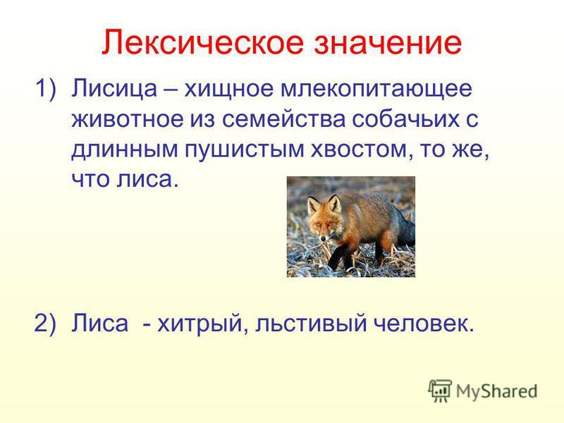 Лексическот значение 1)Лисица – хищнот млекопитающее животнот из семейства собачьих с длинным пушистым хвостом, то же, что лиса. 2)Лиса - хитрый, льстивый человек.