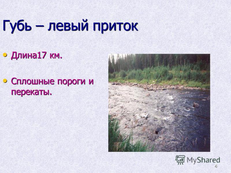 4 Длина 17 км. Длина 17 км. Сплошные пороги и перекаты. Сплошные пороги и перекаты. Губь – левый приток