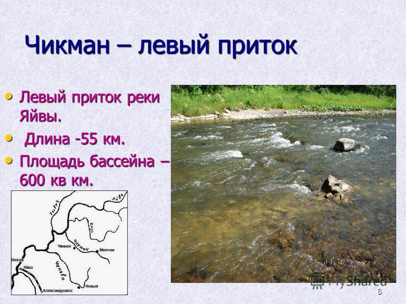 6 Чикман – левый приток Левый приток реки Яйвы. Левый приток реки Яйвы. Длина -55 км. Длина -55 км. Площадь бассейна – 600 кв км. Площадь бассейна – 600 кв км.