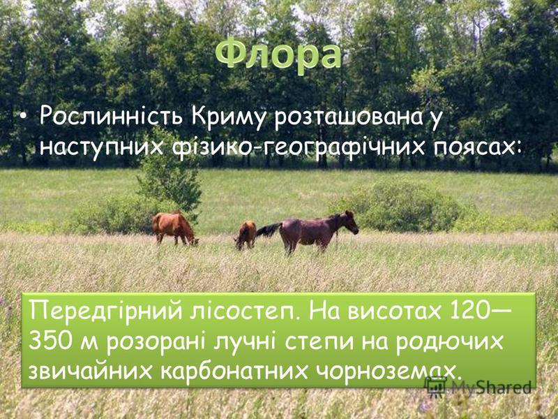 Рослинність Криму розташована у наступних фізико-географічних поясах: Передгірний лісостеп. На висотах 120 350 м розорані лучні степи на родючих звичайних карбонатних чорноземах.