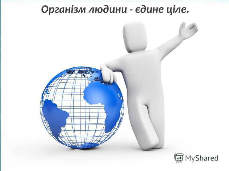 Організм людини - єдине ціле.