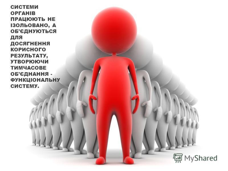 СИСТЕМИ ОРГАНІВ ПРАЦЮЮТЬ НЕ ІЗОЛЬОВАНО, А ОБ'ЄДНУЮТЬСЯ ДЛЯ ДОСЯГНЕННЯ КОРИСНОГО РЕЗУЛЬТАТУ, УТВОРЮЮЧИ ТИМЧАСОВЕ ОБ'ЄДНАННЯ - ФУНКЦІОНАЛЬНУ СИСТЕМУ.