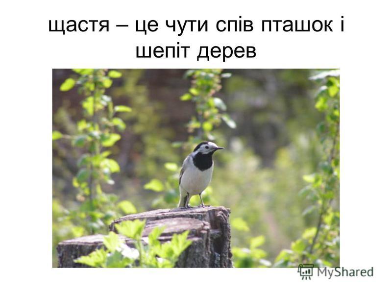 щастя – це чути спів пташок і шепіт дерев