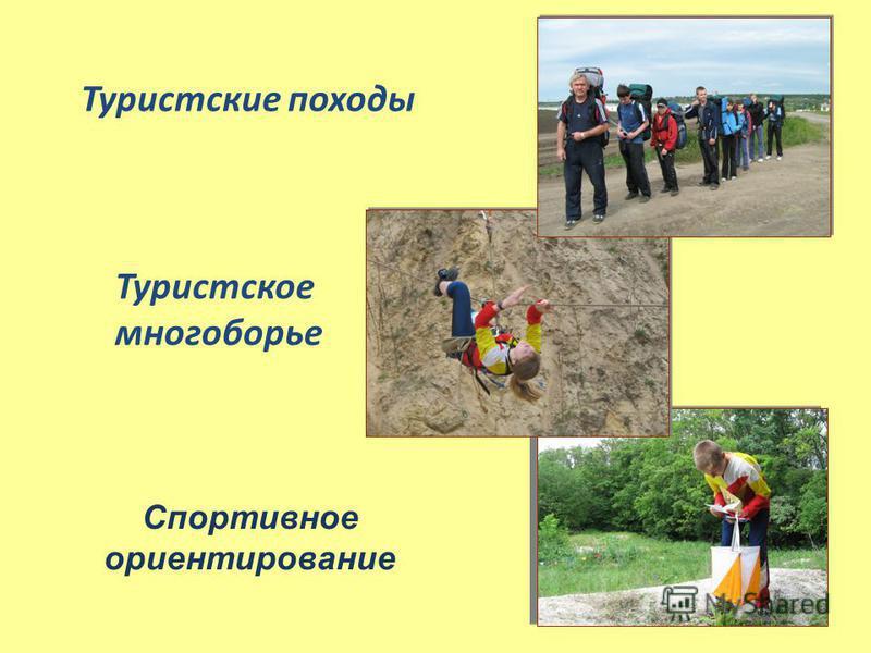 Спортивное ориентирование Туристские походы Туристское многоборье
