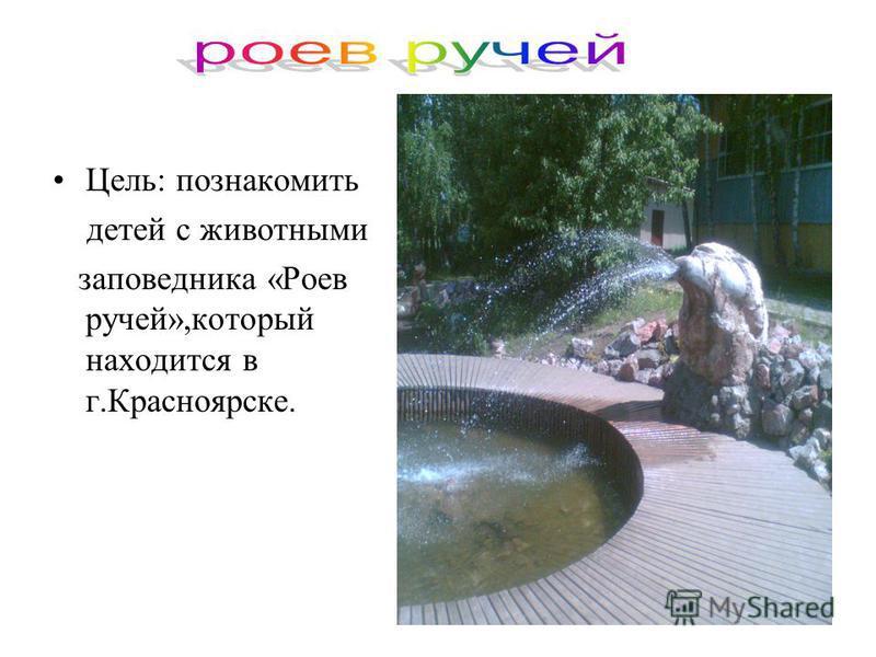 Цель: познакомить детей с животными заповедника «Роев ручей»,который находится в г.Красноярске.